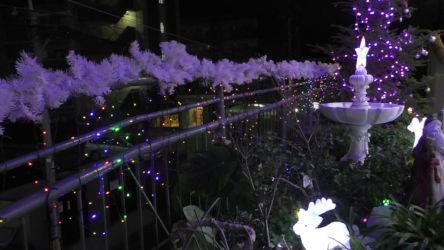 reのばら保育園 (3)